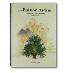 Le buisson ardent: la Haggadah de Pessah et ses messages ABIB Nethanel