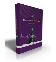 Questions au Rav Dayan (tome 6)