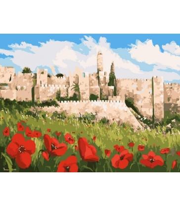 Peinture d'anémone à Jérusalem – peinture par numéros Tamar Zeitlin